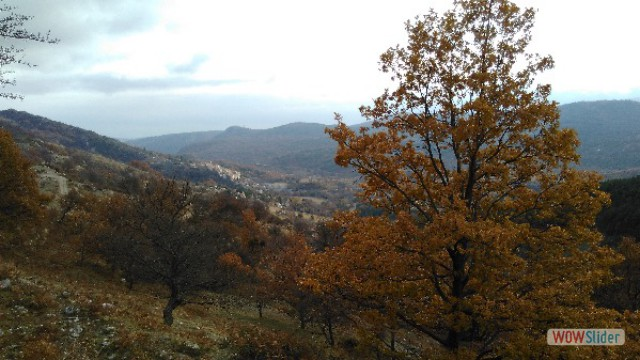 automne_coursegoules21