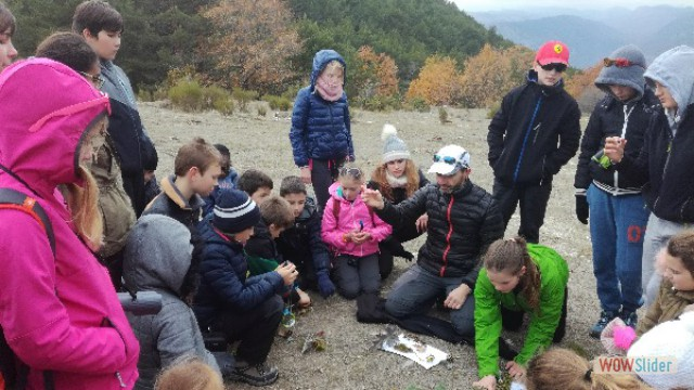 automne_coursegoules26