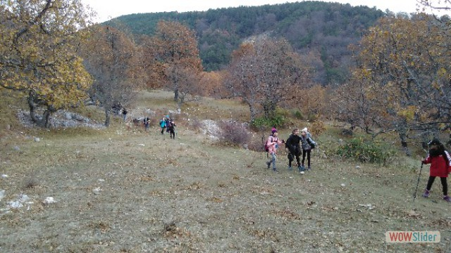 automne_coursegoules27